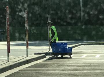 Walmart Grocery Associate Bringing Groceries