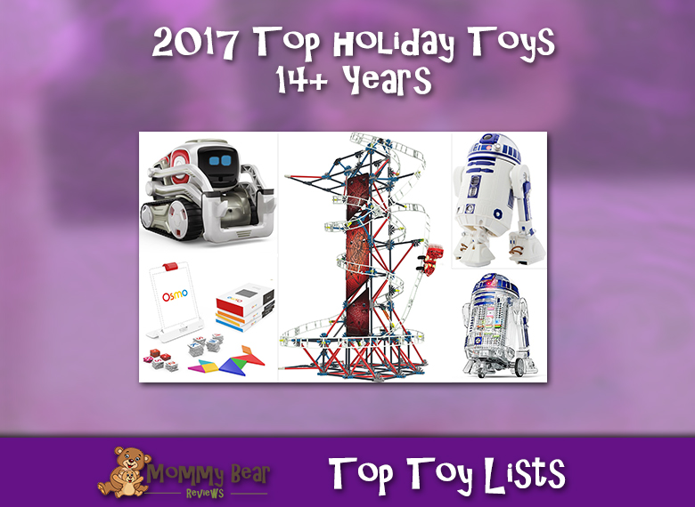 2017 Holiday Gifts for 14 Years & Up