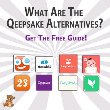What Are The Qeepsake Alternatives
