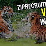 ZipRecruiter vs Indeed: Which Job Site is Better