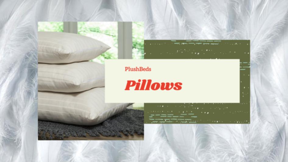 PlushBeds Pillows
