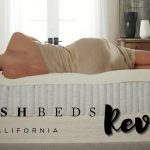 PlushBeds Review