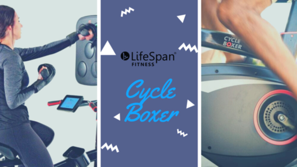 The Cycle Boxer